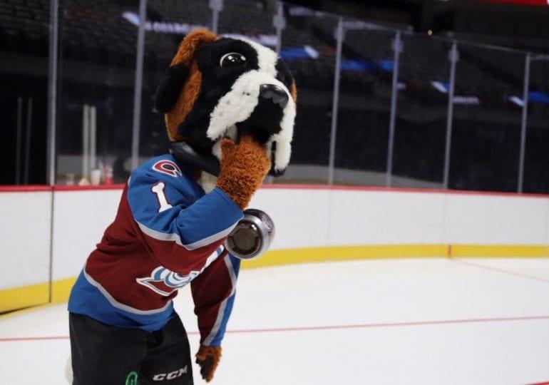 Maskottchen der NHL-Teams #5: Colorado Avalanche