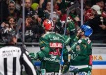 DEL-Spielvorschau: Straubing Tigers gegen Augsburger Panther