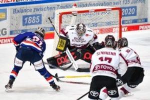 Haie-Goalie Weitzmann wechselt zu den Roosters
